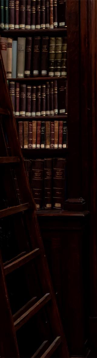 biblioteca prima parete sx